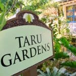 Treetop to Table: Taru Gardens at Sundy House